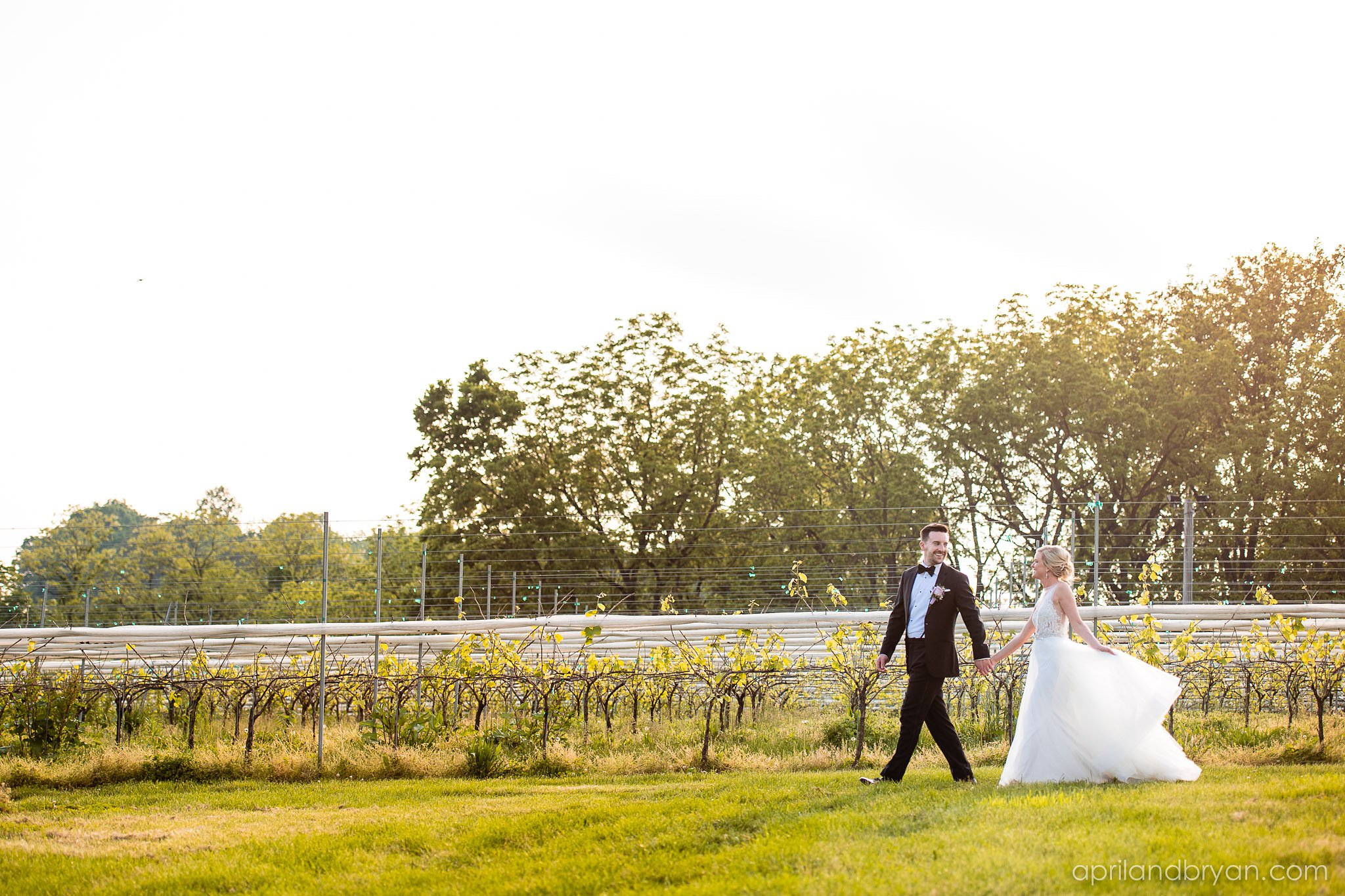 Vineyard at Grandview Wedding Photographer