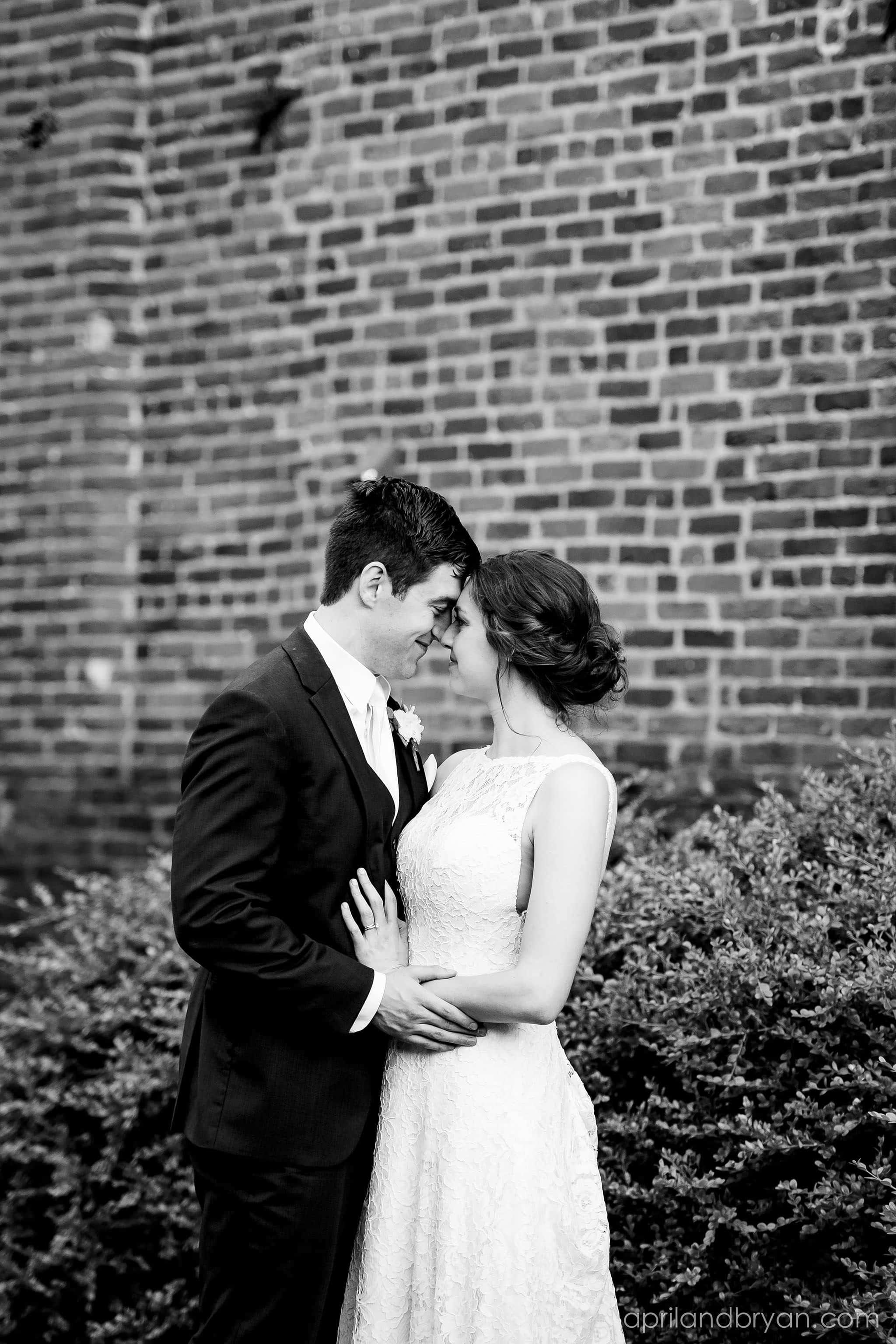 F And M Wedding Photographer