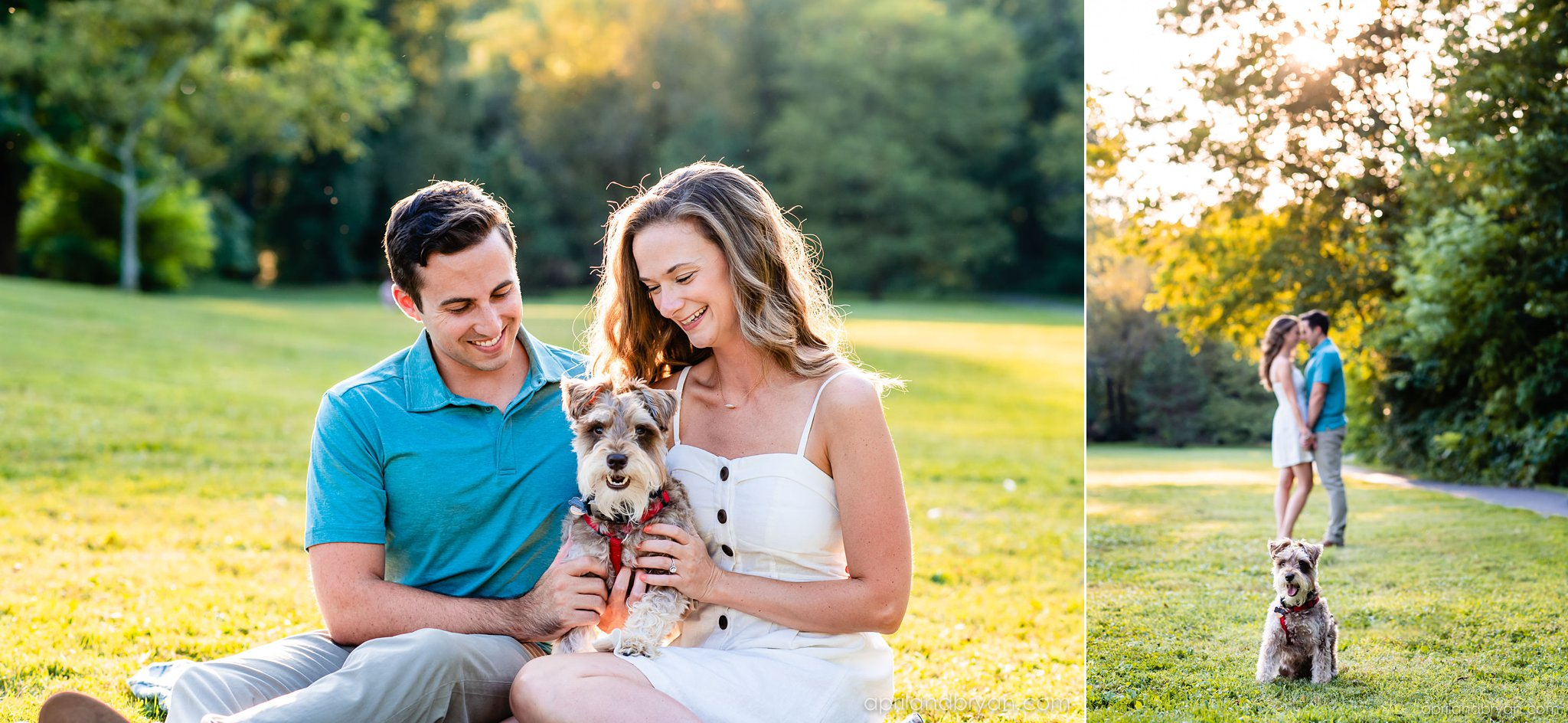 puppy love engagement session