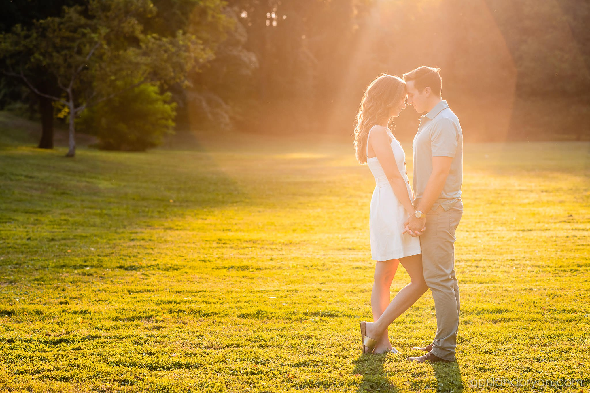 golden light engagement session