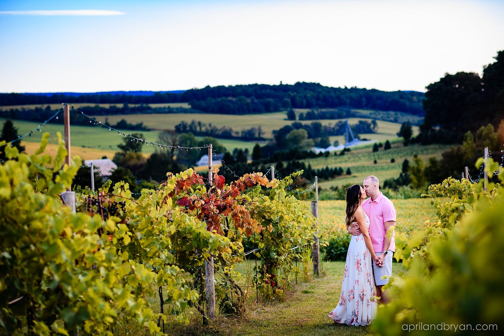 Blue Ridge Estate Winery Engagement Photographer