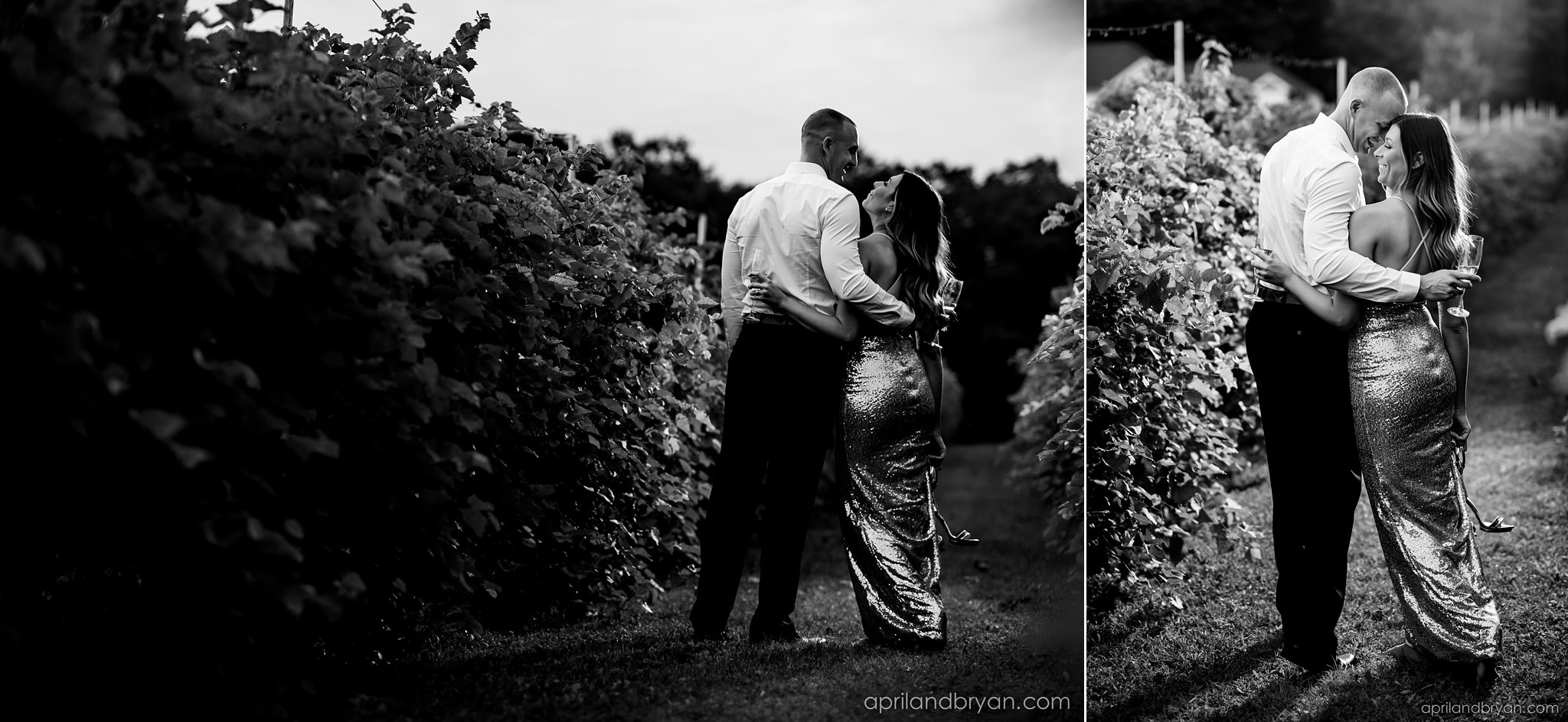 Blue Ridge Estate Winery Photographer